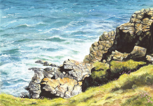 Cornish Coast by Jeanette Waldron