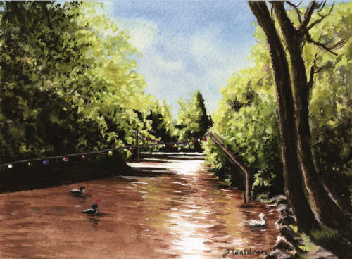 Summer View of Brook by Jeanette Waldron