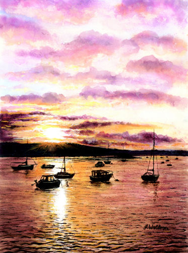 View near Shaldon by Jeanette Waldron