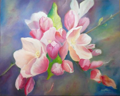 Apple Blossom by Jenny Norman