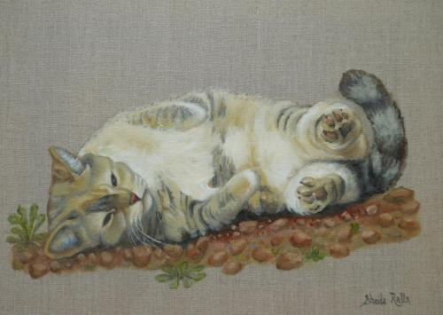 Phoebe by Sheila Ralls